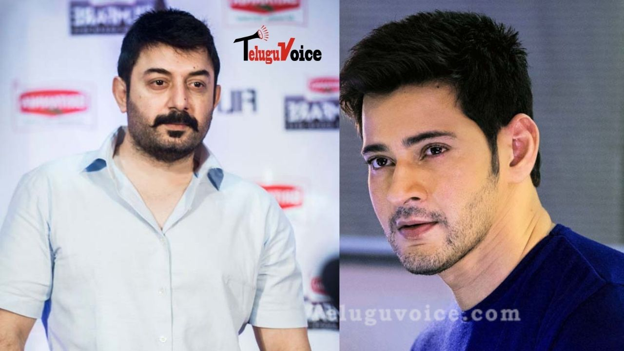 The Antagonist For Mahesh's Project Sarkaru Vaari Paata Is Finalized? teluguvoice