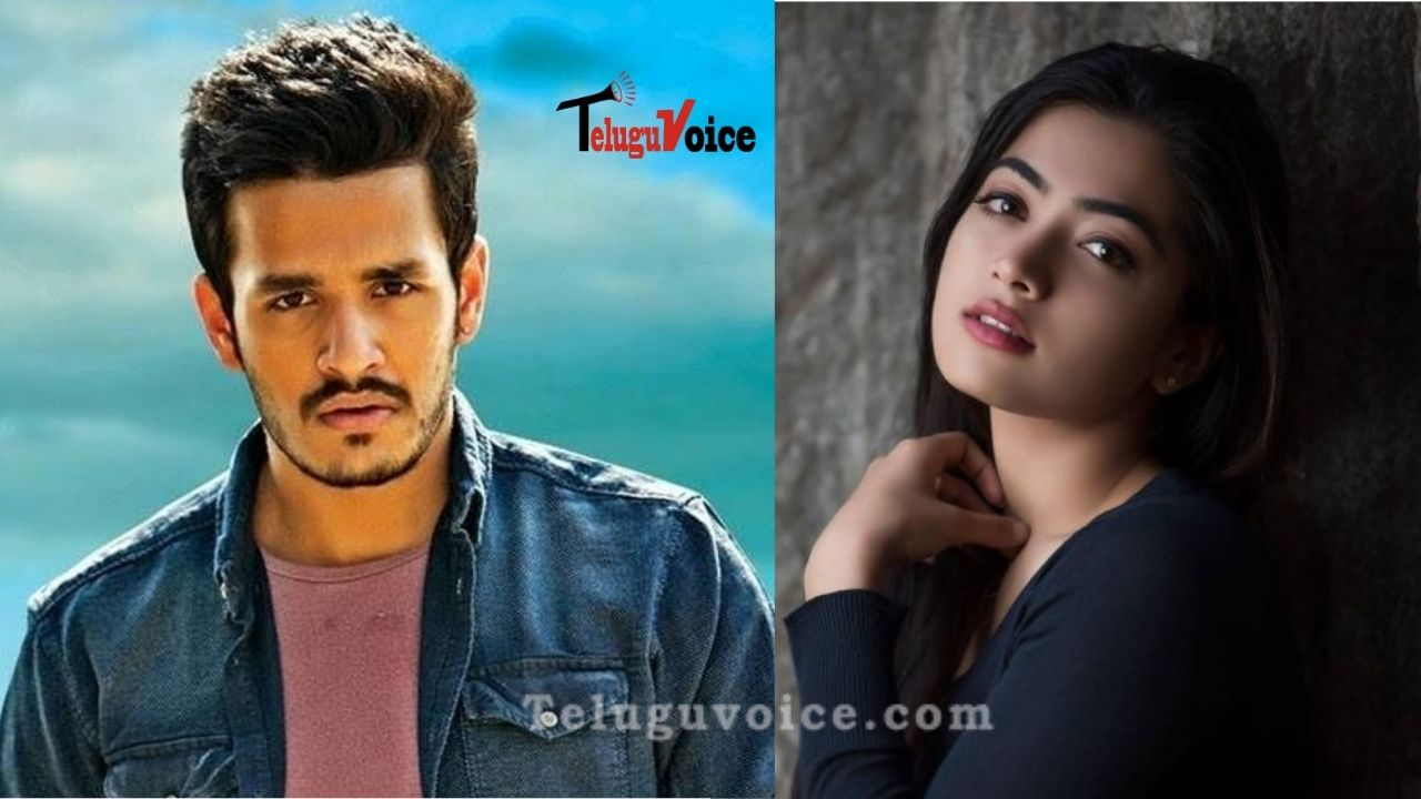 Kannada Beauty Pairing With Akhil Akkineni? teluguvoice