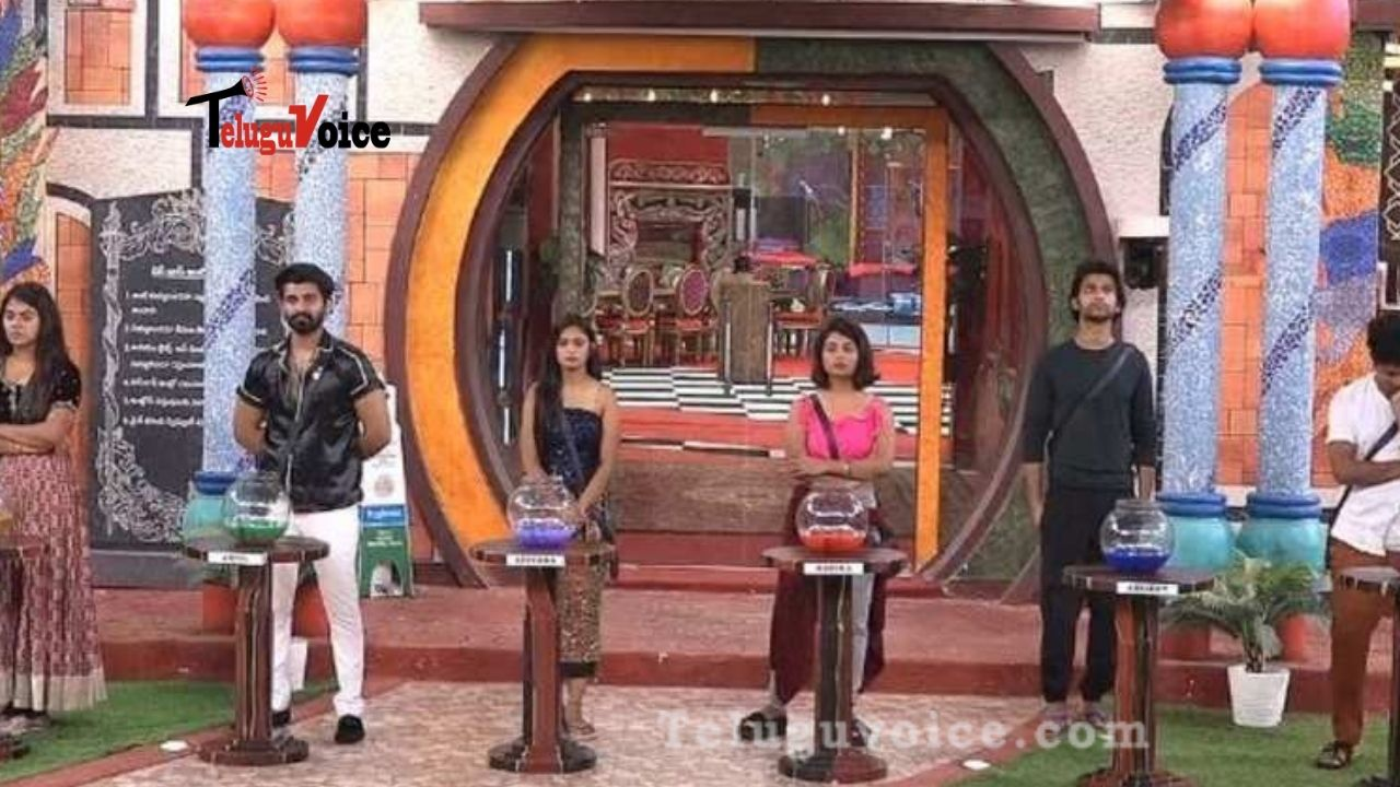 Bigg Boss 4: Monal And Avinash Ugly Spat During Nomination Process teluguvoice