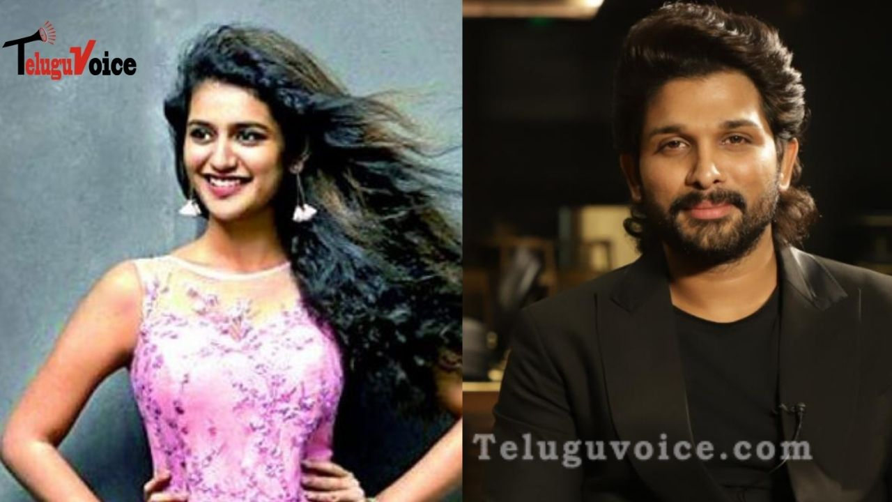 Malayalam Wink Beauty: I Didn't Reject Allu Arjun Movie teluguvoice