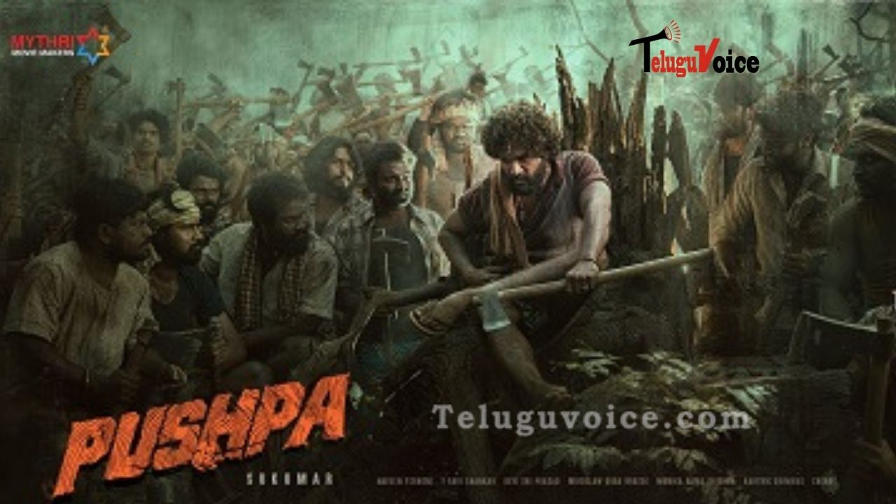 Filmmakers Of Pushpa Scaring U.S. Buyers! teluguvoice