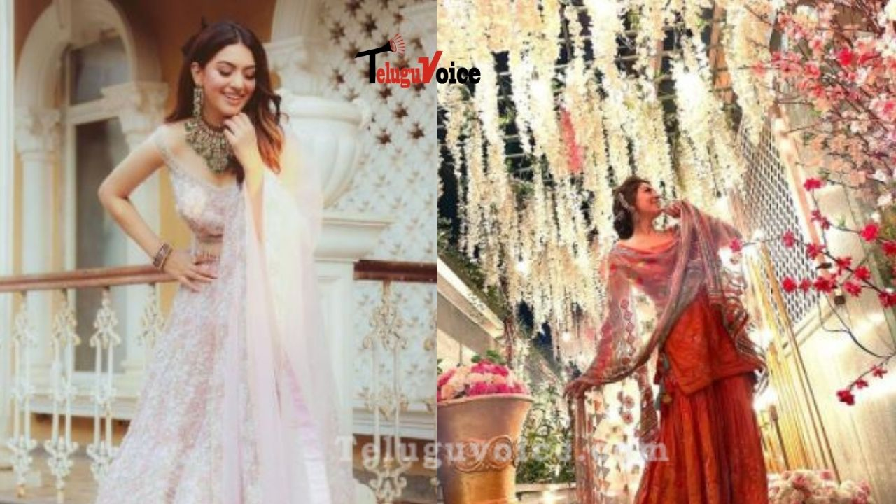 Pic Talk:  Beautiful Appearance Of Hansika For Brother' Wedding teluguvoice