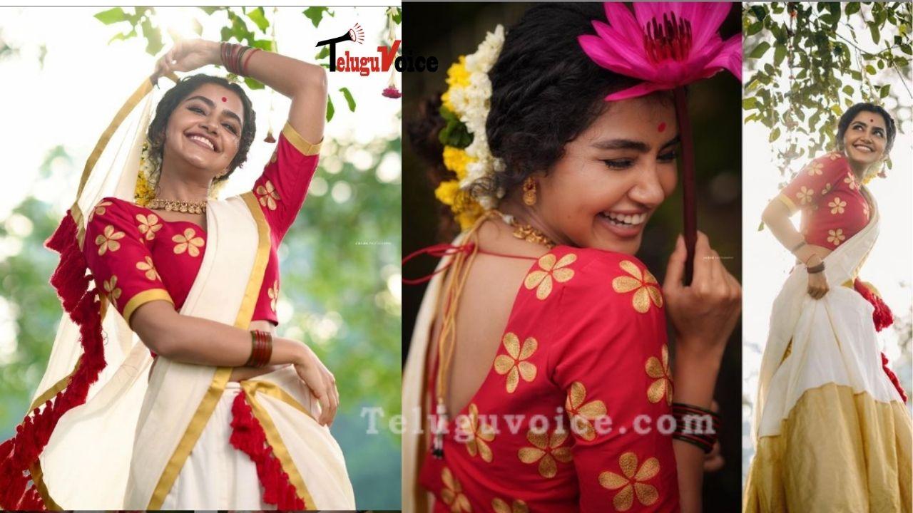 Anupama Parameswaran Festive Look  teluguvoice